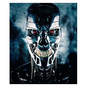 Terminator. Размер: 25 х 30 см